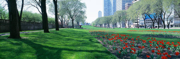 Michigan Ave Photograph - Public Gardens, Loop, Cityscape, Grant by Panoramic Images