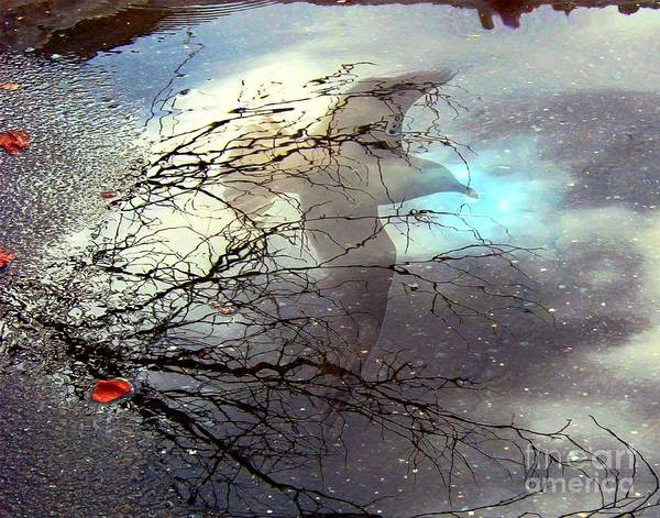 Digital Art - Puddle Art by Dale   Ford