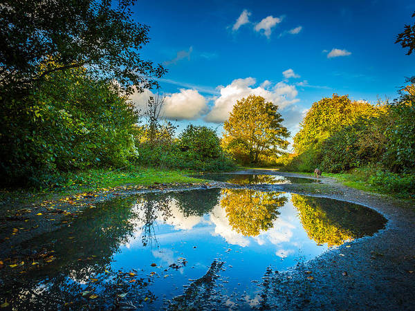 Photograph - Puddles. by Gary Gillette