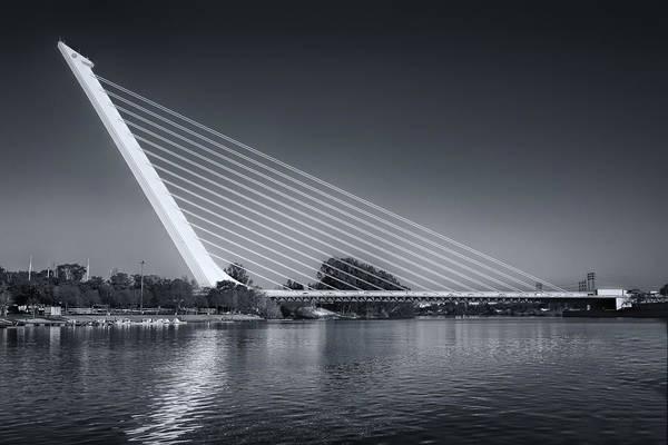 Photograph - Puente Del Alamillo Seville by Joan Carroll