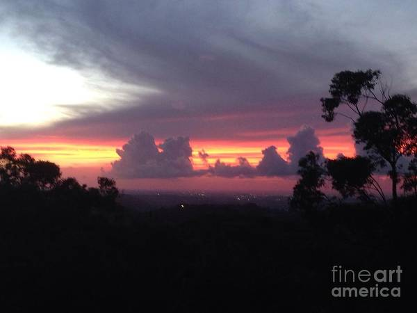 Photograph - Puerto Rican Evening by The Art of Alice Terrill