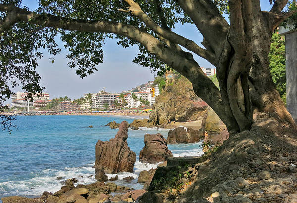 Beach Hotel Photograph - Puerto Vallarta From A Distance by Douglas Simonson
