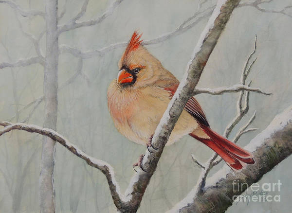 Painting - Puffed Up For Winters Wind by Sandy Brindle
