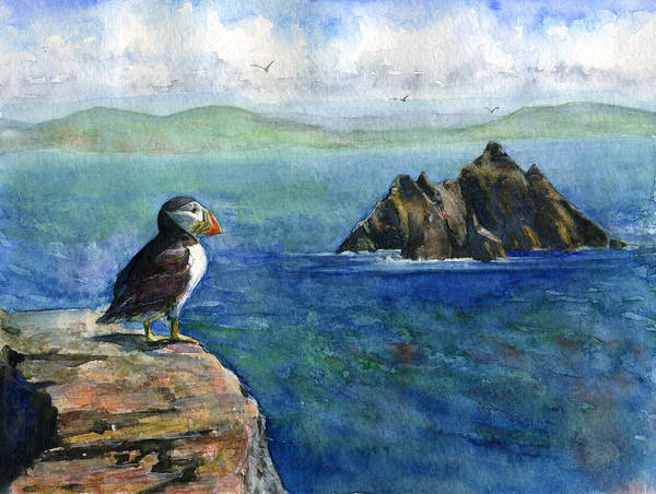 Puffins Wall Art - Painting - Puffin At Skellig Island Ireland by John D Benson