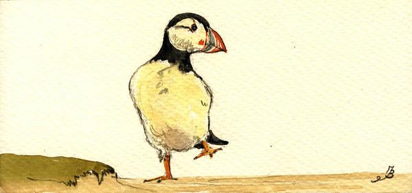 Seabirds Wall Art - Painting - Puffin Bird by Juan  Bosco