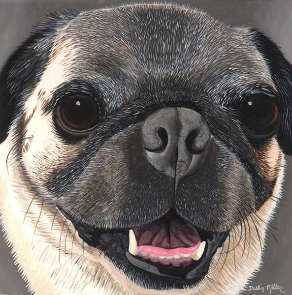 Painting - Pug Portrait by Dustin Miller