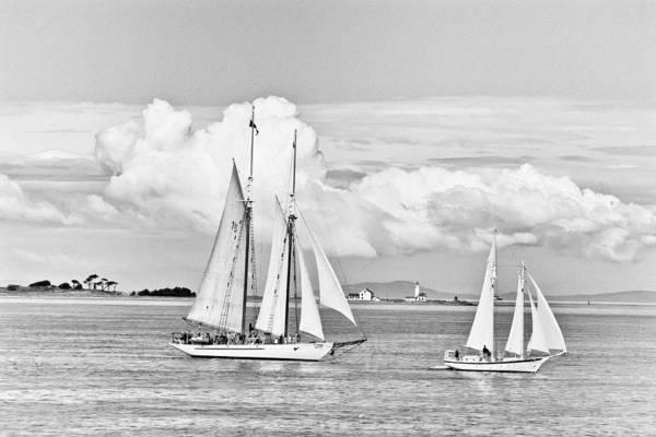 Photograph - Puget Sound Bw by Patrick M Lynch