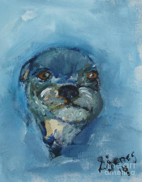 Painting - Puggie by Shelley Jones
