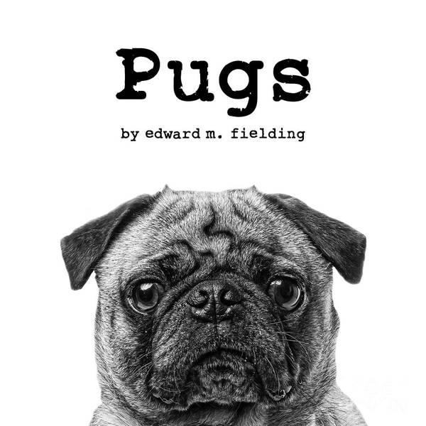 Canine Photograph - Pugs By Edward Fielding by Edward Fielding