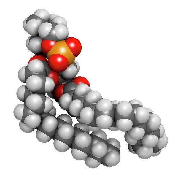 Pharma Wall Art - Photograph - Pulmonary Surfactant Molecule by Molekuul