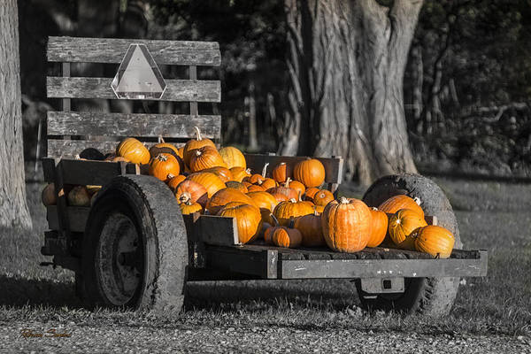 Photograph - Pumpkin Cart by Rebecca Samler
