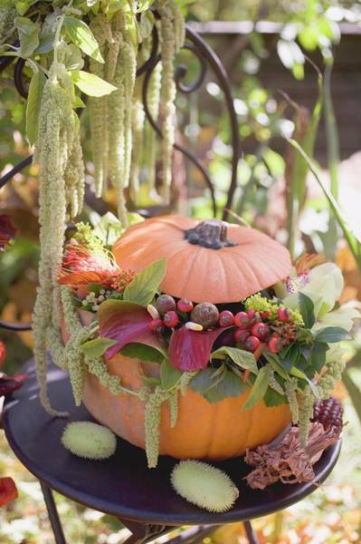 Cucurbits Photograph - Pumpkin Decorated With Flowers On Garden Table by Foodcollection