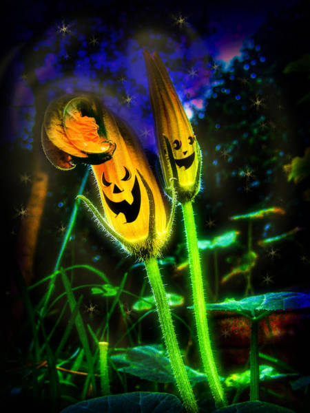 Digital Art - Pumpkin Flowers by Alessandro Della Pietra