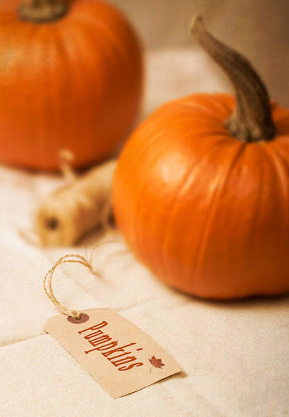 Gourd Photograph - Pumpkin Label by Amanda Elwell