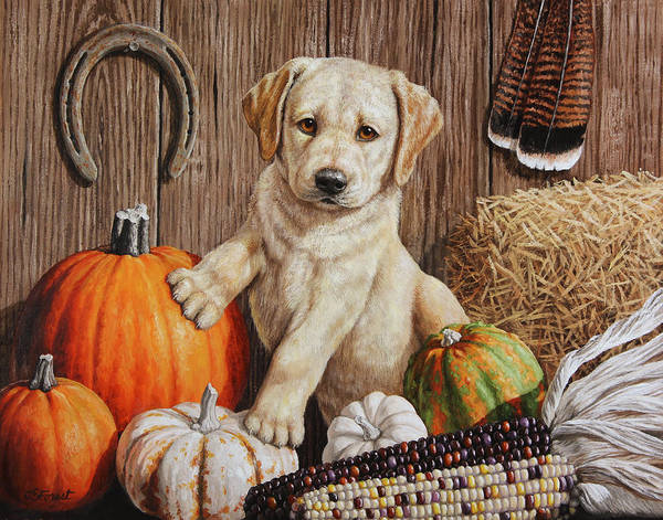 Pup Painting - Pumpkin Puppy by Crista Forest