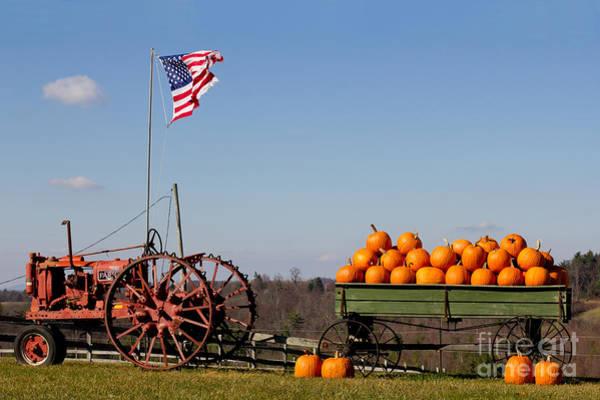 Photograph - Pumpkin Wagon by Les Palenik