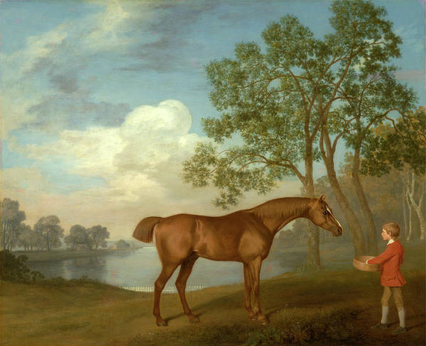 Pumpkin With A Stable-lad Signed And Dated Art Print