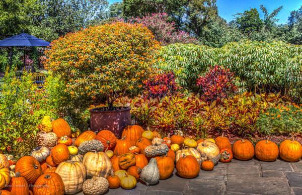 Photograph - Pumpkins At The Garden by Ross Henton