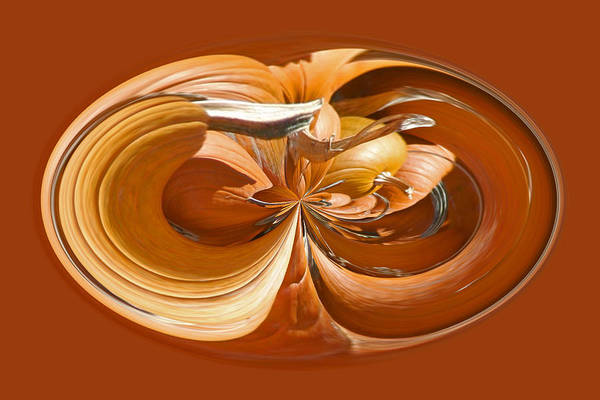 Photograph - Pumpkins by Jim Baker
