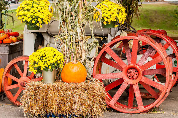 Photograph - Pumpkins Next To An Old Farm Tractor by Alex Grichenko