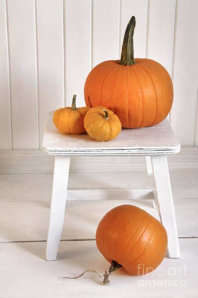Photograph - Pumpkins On Small Bench by Sandra Cunningham