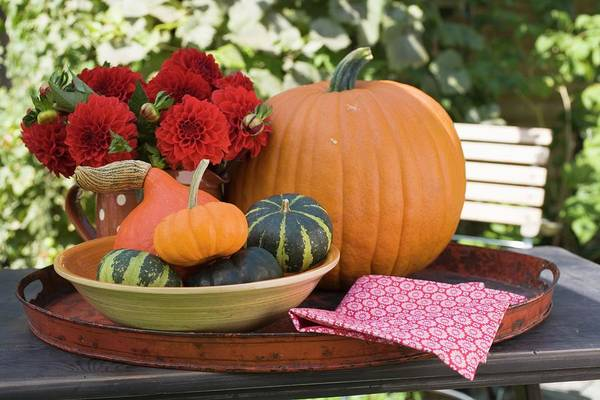 Wall Art - Photograph - Pumpkins, Squashes And Flowers On Table In The Open Air by Foodcollection