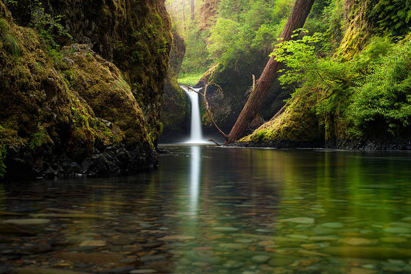 Photograph - Punch Bowl Falls by Andrew Kumler