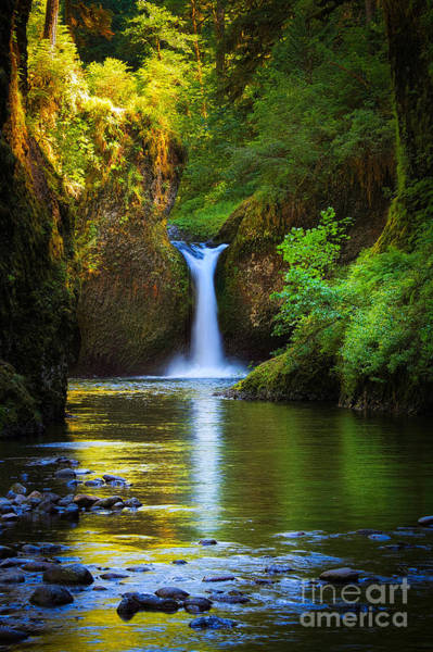 Moss Green Photograph - Punchbowl Falls by Inge Johnsson