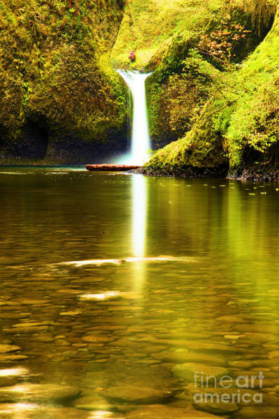 Photograph - Punchbowl Portrait by Adam Jewell