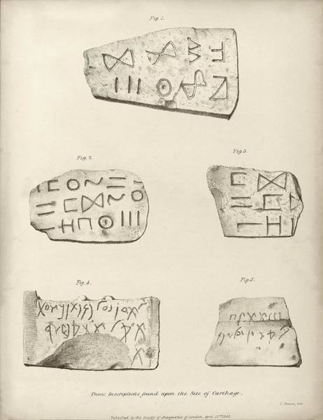 Artifacts Wall Art - Photograph - Punic Inscriptions From Carthage by Middle Temple Library