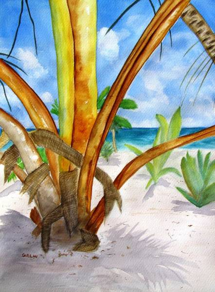 Coconut Painting - Punta Cana Beach Palm by Carlin Blahnik CarlinArtWatercolor