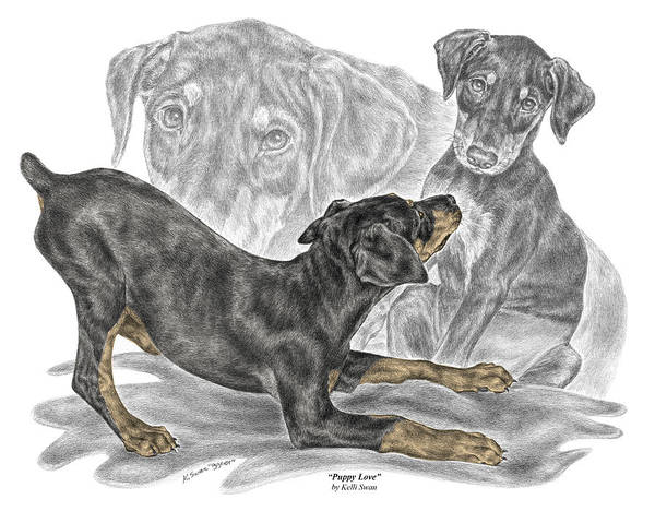Drawing - Puppy Love - Doberman Pinscher Pup - Color Tinted by Kelli Swan
