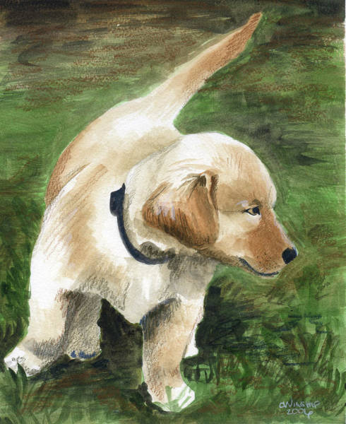 Golden Retriever Mixed Media - Puppy Patrol by Christine Winship