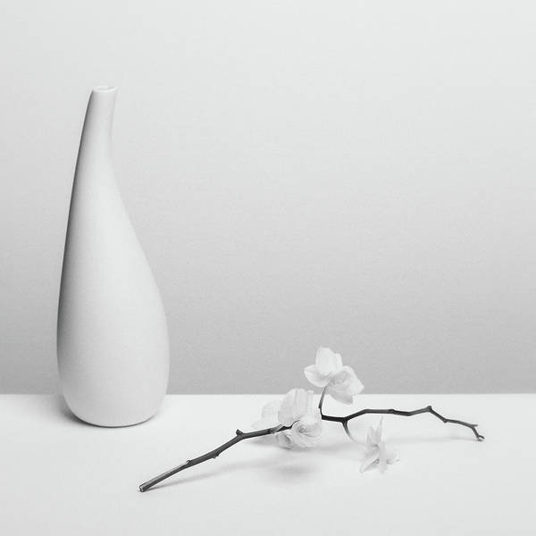 Flower Vase Photograph - Pure by Kristina Oveckova