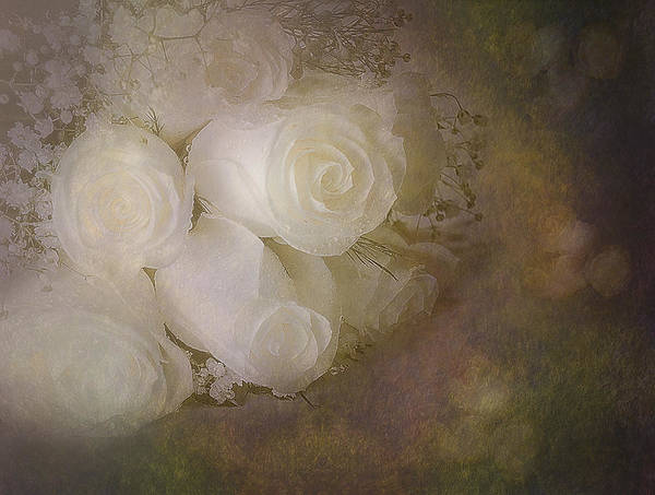 Photograph - Pure Roses by Susan Candelario