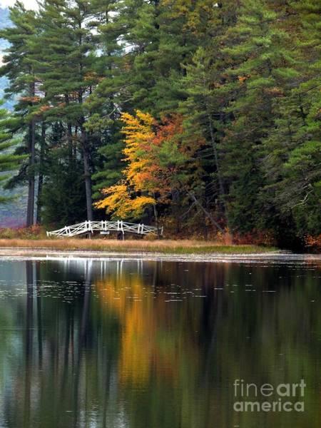 Photograph - Purity Lake by Marcia Lee Jones
