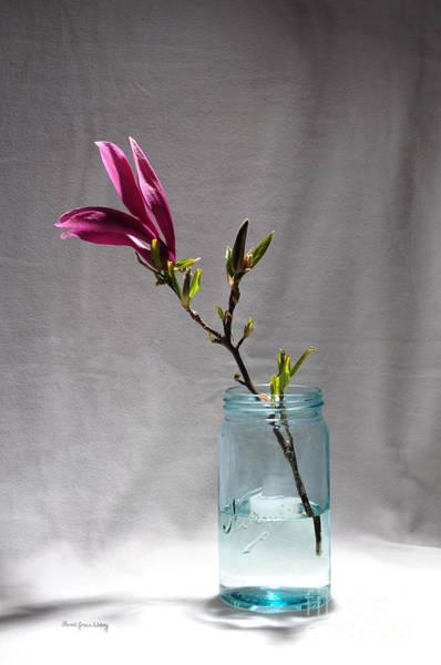 Photograph - Purple And Blue by Randi Grace Nilsberg