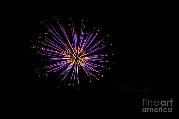Fireworks Show Wall Art - Photograph - Purple Blast by Robert Bales
