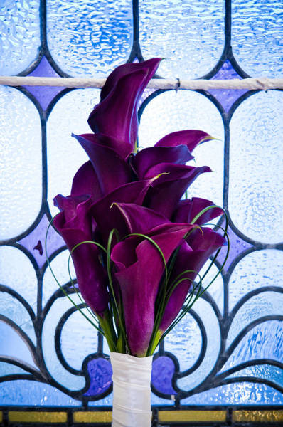 Floristry Photograph - Purple Calla Lilies by Mick House