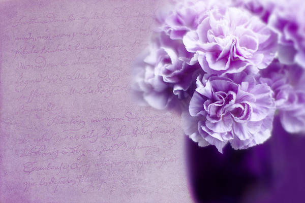 Carnation Photograph - Purple Carnations by Rebecca Cozart