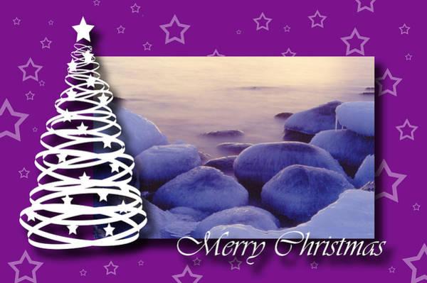 Photograph - Purple Christmas by Randi Grace Nilsberg