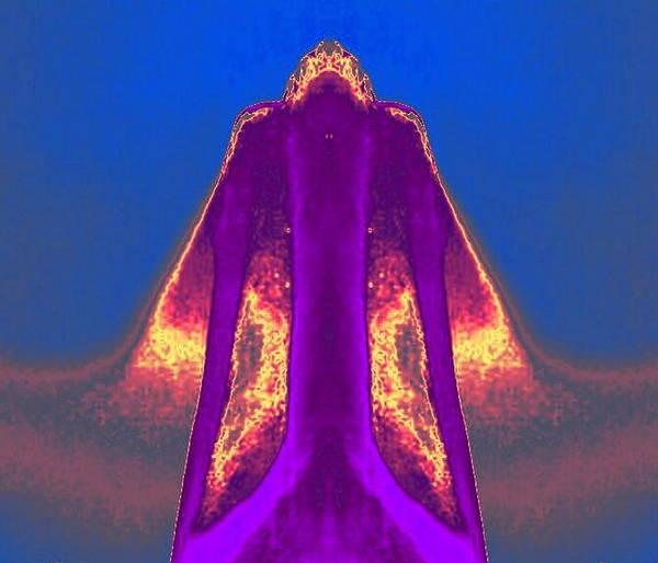 Digital Art - Purple Coat by Mary Russell