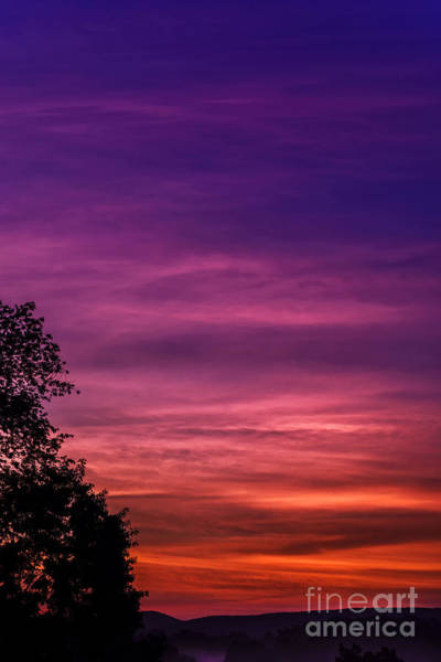 Lavender Mist Wall Art - Photograph - Purple Dawn  by Thomas R Fletcher