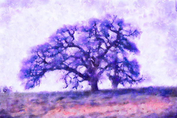 Mixed Media - Purple Dreamtime Oak Tree by Priya Ghose