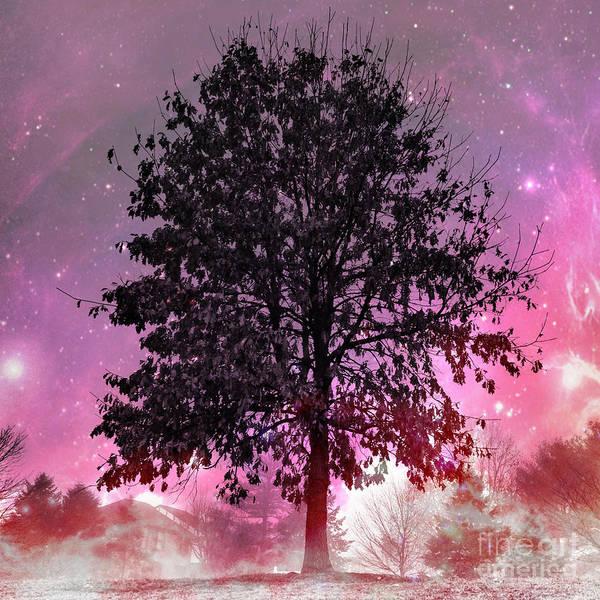 Photograph - Purple Fever by Chris Scroggins