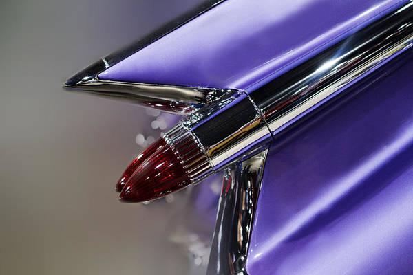 Fins Photograph - Purple Fin by Rebecca Cozart