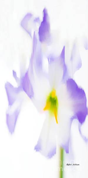 Digital Art - Purple Flowers by Rafael Salazar