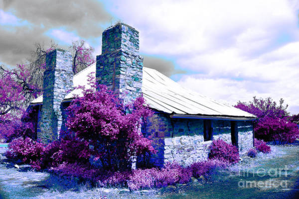 Historic House Digital Art - Purple Garden by Phill Petrovic