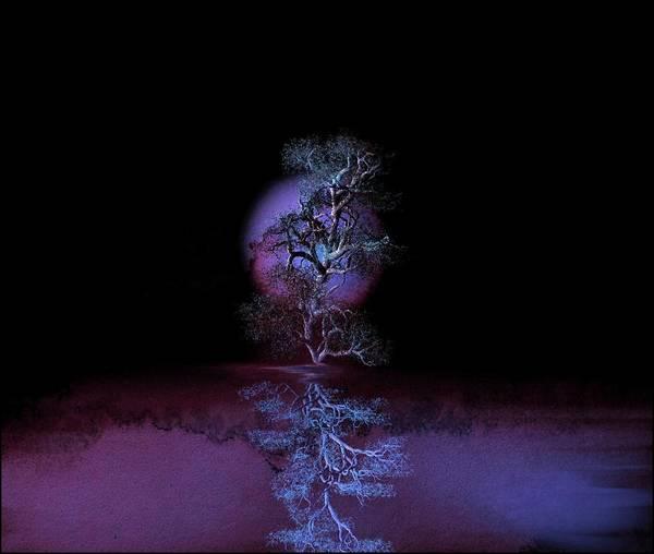 Bonsai Tree Digital Art - Purple Glow by Diane Storer