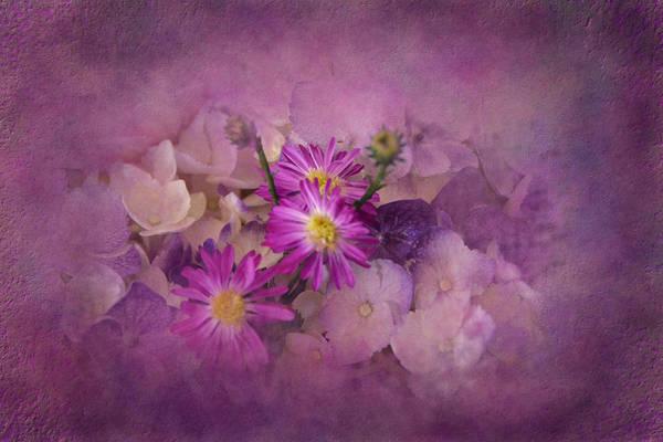 Snap Dragons Wall Art - Photograph - Purple Haze by Carla Parris